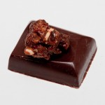 Amano cinnamon ganache with candied pecans