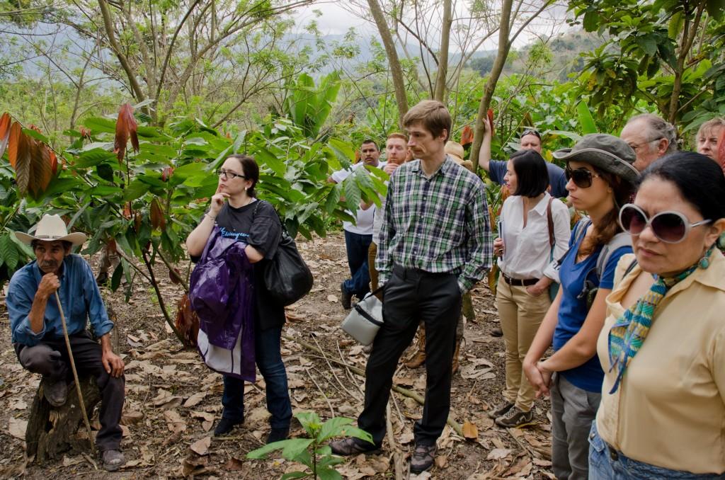 Visiting the Mayan Red plantations in Honduras