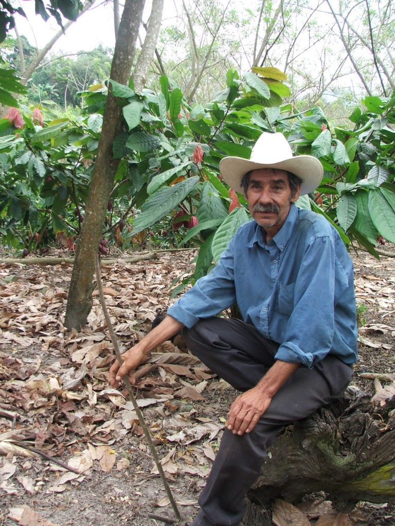 Don José Arita at his cacao farm